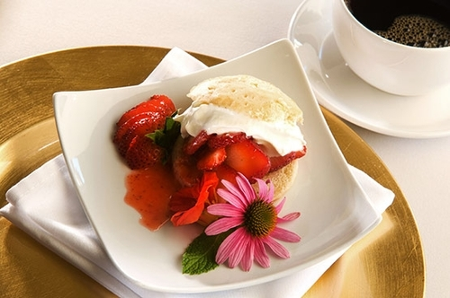58a63a01f658f72d3f90712a_strawberry-shortcake-p-500x333